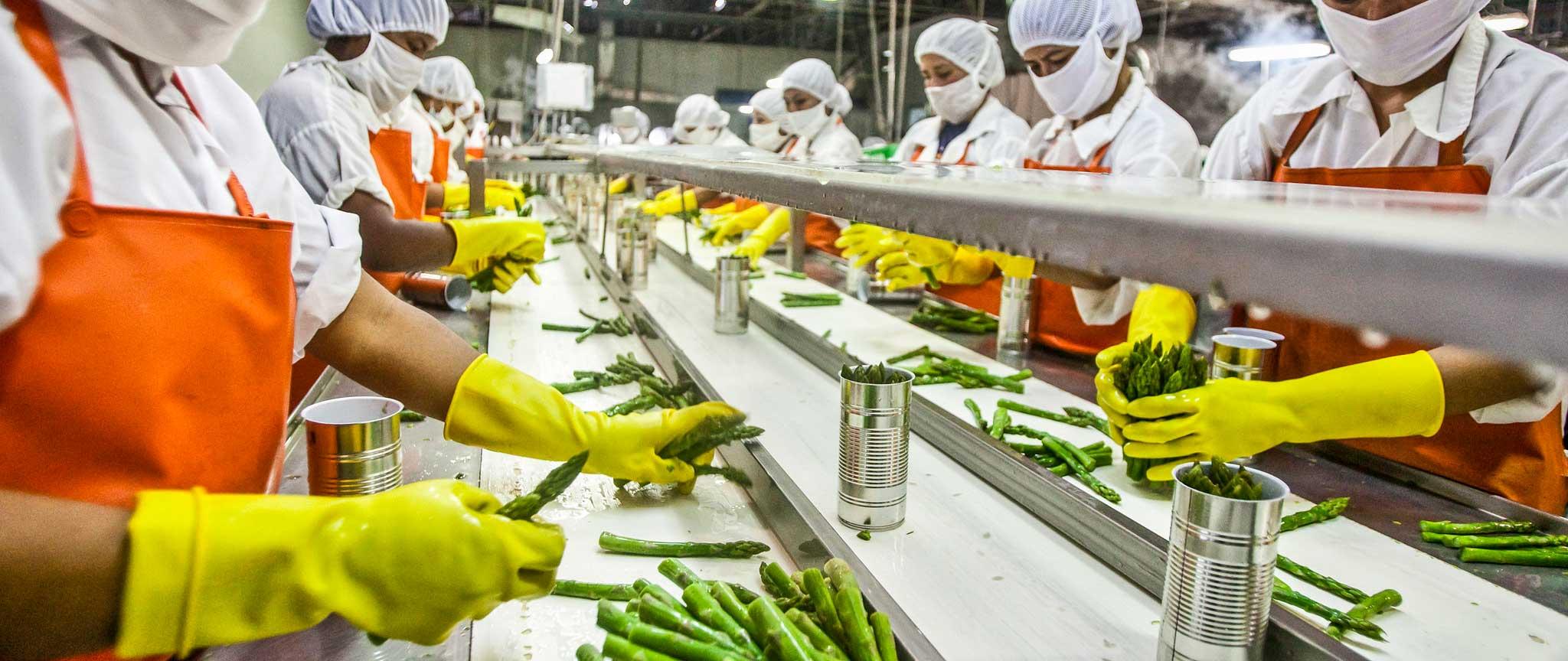 vertaalbureau voedingsmiddelenindustrie